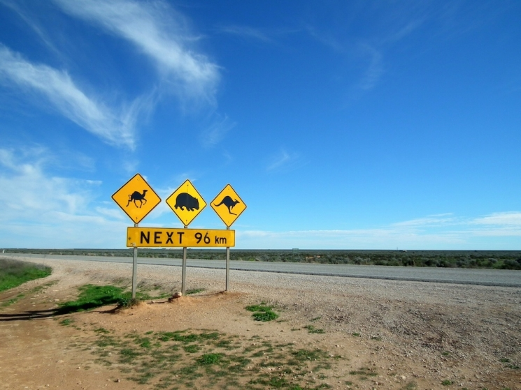 relocation véhicule australie