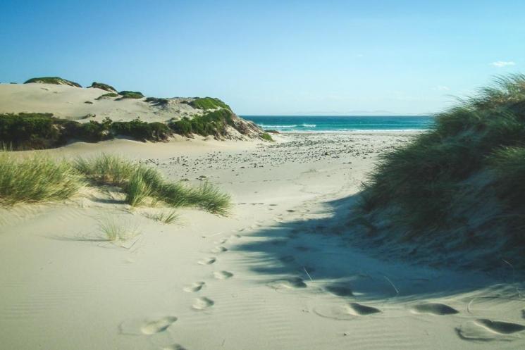 Roaring Beach