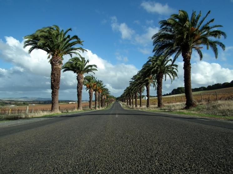 Barossa Valley, Australie du Sud