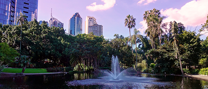 Jardins Botaniques Brisbane
