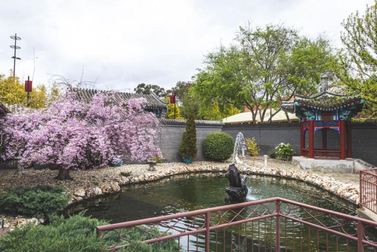 Jardins chinois à Bendigo