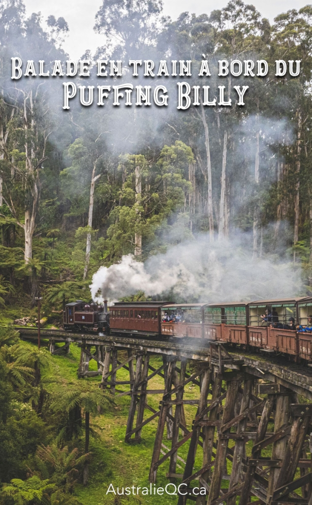 Image pour Pinterest : Puffing Billy