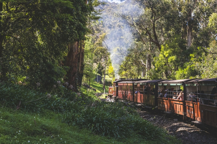 Train Puffing Billy
