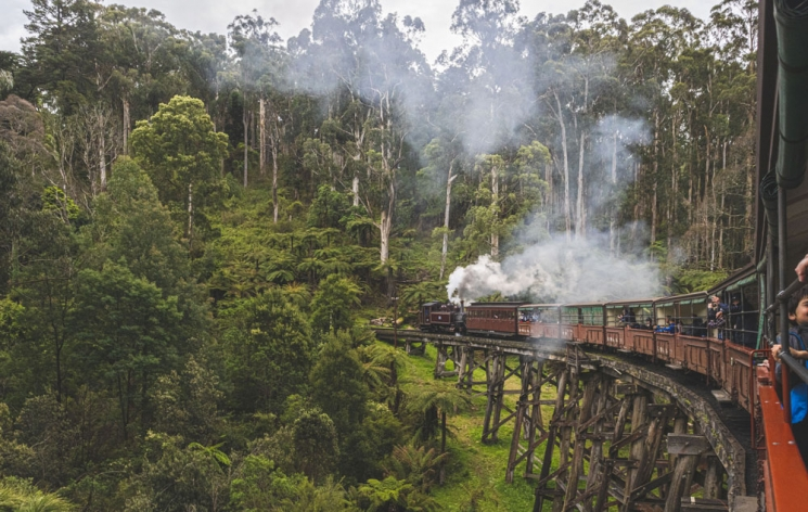 Train Puffing Billy sur un pont