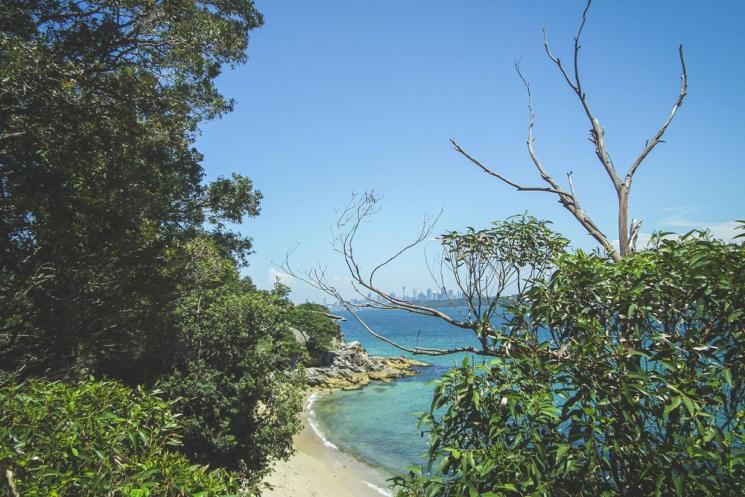 Vue des Eastern Suburbs de Sydney