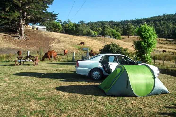 Camping payant en Tasmanie